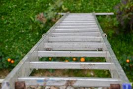 Life Insurance Ladder